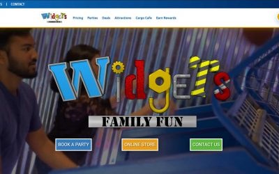 Widgets Family Fun