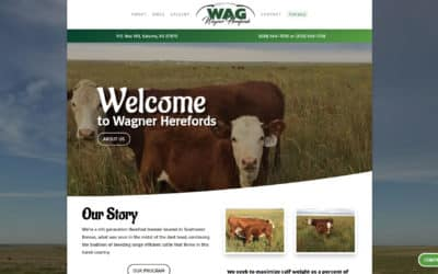 Wagner Herefords