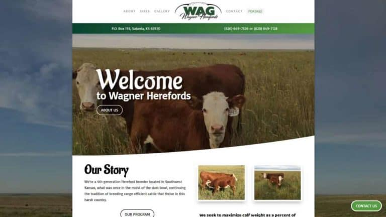 Wagherefords website creation